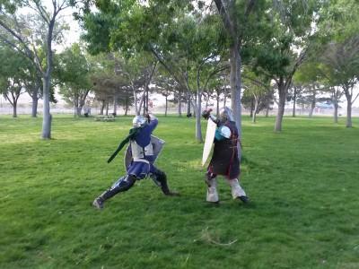 Gaelic Games 2014 (30/37)